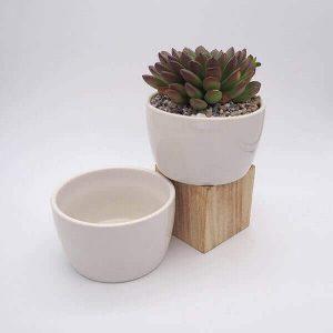 Bowl Pot Small