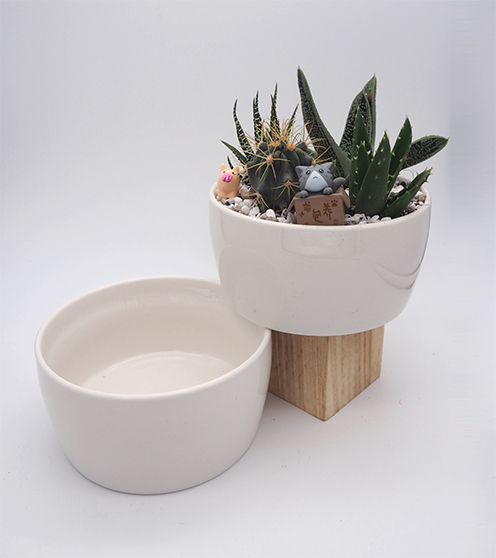 Bowl pot large
