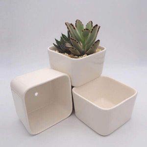 Rectangular Succulent Pot