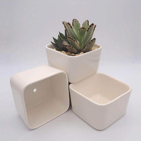 Rectangular Succulent Pot
