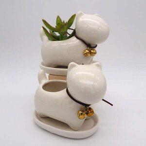 Succulent Dog Pot
