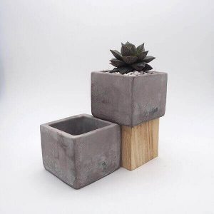 medium concrete pot