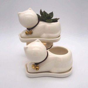 Succulent Kitten Pot