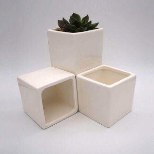 Square Succulent Pot