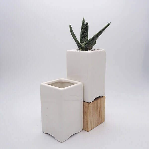square tall pot
